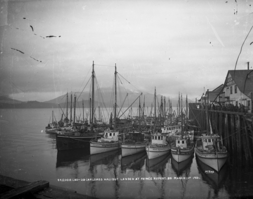 Stories of Prince Rupert and the region